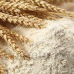 L'importanza della farina, concetti per non sbagliare acquisto