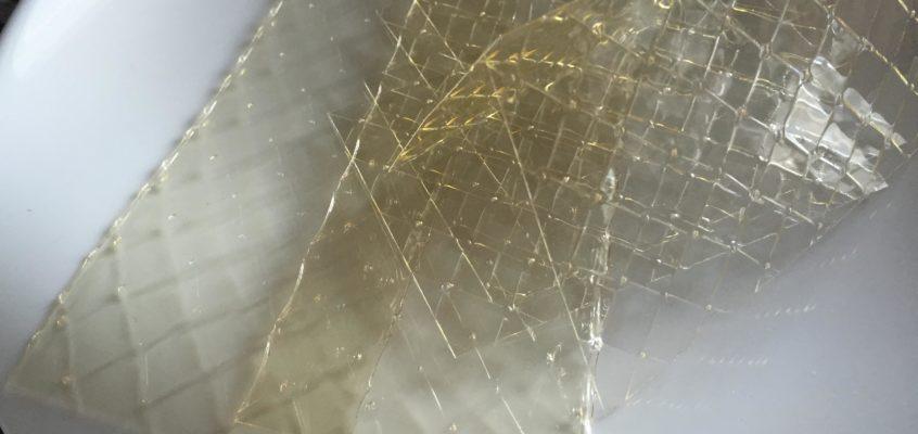 Colla di pesce, la gelatina animale