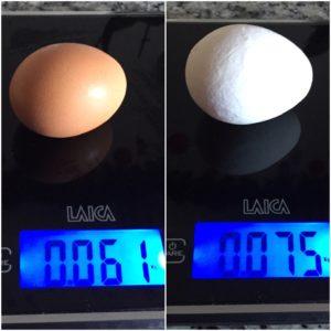 Differenza di peso fra uova apparentemente simili